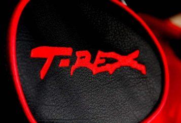 T-Rex-Job 2